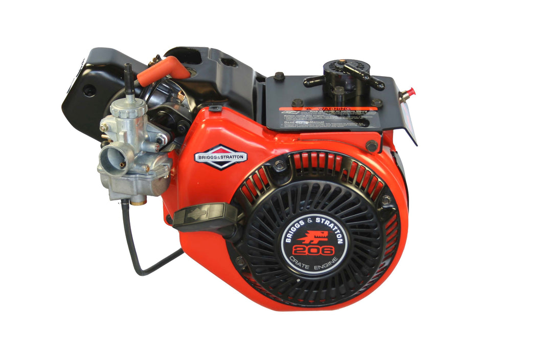 2019 Briggs & Stratton LO 206 Engine