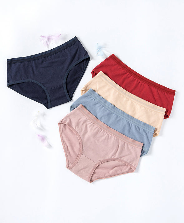 Velvet Warm Cotton 5-pack Hipster Panties