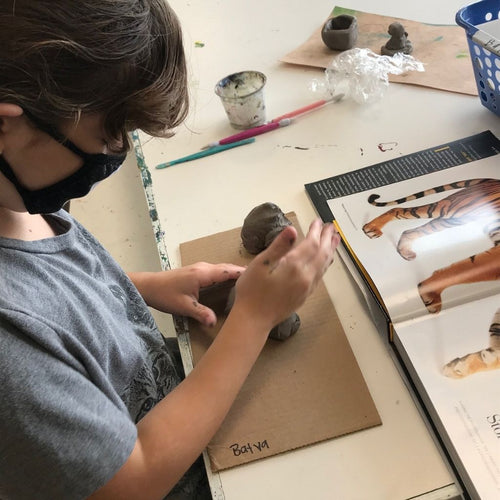 Creating Art from Clay (age 7-14) Feb. 20-March 27