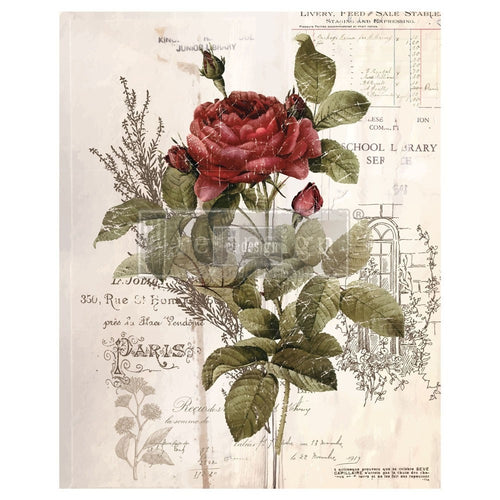 Botanical Rose Transfer