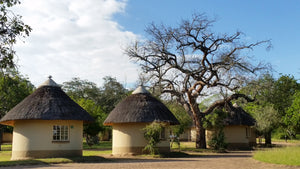 MOVING IN THE RIGHT DIRECTION – KRUGER NATIONAL PARK OPENS UP OVERNIGHT ACCOMMODATION FOR SOME SOUTH AFRICANS