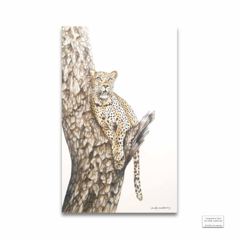 Original Artwork - Andy Anderson - Leopard in Tree