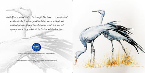 Greeting Card Single - Blue Crane