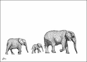 Elephants Walking Limited Edition Print