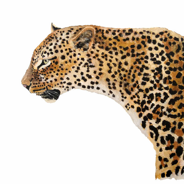 Original Artwork - J Patterson - Leopard