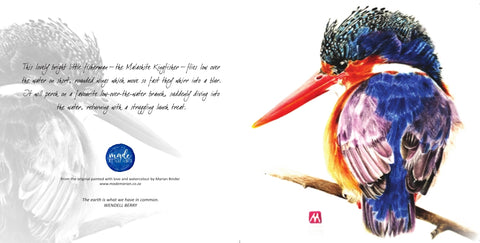 Greeting Card Single - Malachite Kingfisher