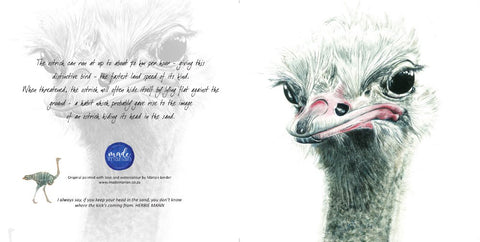 Greeting Card Single - Ostrich