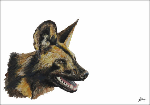 Limited Edition Print Wildlife in colour - African Wild Dog Panting