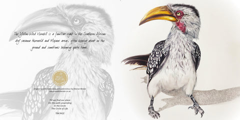 Greeting Card Single - Watercolour artist - Yellow Billed Hornbill