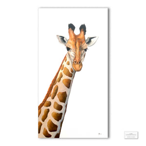 Original Artwork - J Patterson - Giraffe