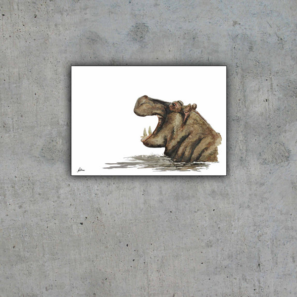 Limited Edition Print Wildlife in colour - Hippo