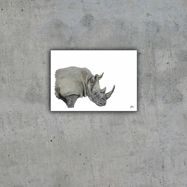 Limited Edition Print Wildlife in colour - Rhino