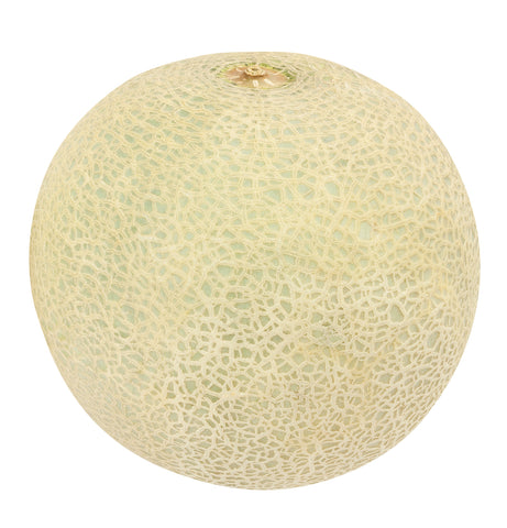 Fresh Cantaloupe (Each) (CANP)