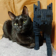 Black Cats Building Kit