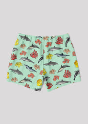 Dolphin Coral Swim Trunks - All Everything Dolphin