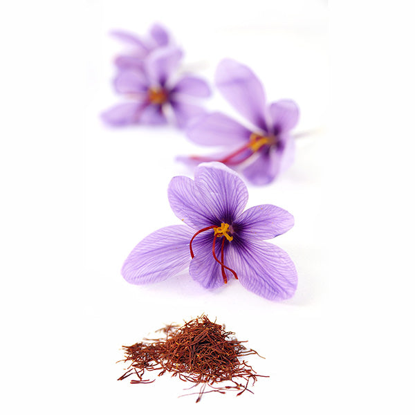 Saffron Crocus Bulbs (Crocus Sativus)-BUY 4 GET 1 Free-Non GMO-Free Shipping!!!!