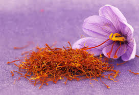 Saffron Crocus Bulbs (Crocus Sativus)-BUY 3 GET 1 Free-Non GMO-Free Shipping!!!!