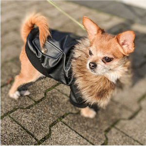 Waterproof Leather Winter Coat for Dogs with Warm Fleece Lining