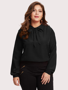 Plus Tie Neck Chiffon Top