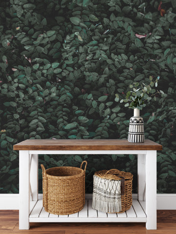 Premium Landscape Murals Premium Vinyl Wall Coverings Perfect Accent Walls Easy To Install Timberleawallpaper