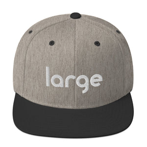 Large Music Snapback Hat