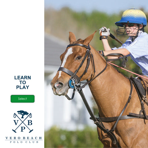 the-vero-beach-polo-club-learn-to-play