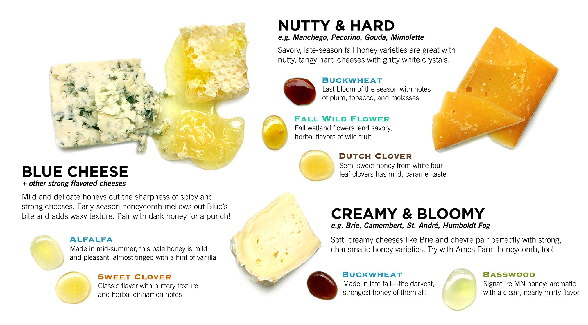 Cheese Pairing Guide with Minnesota Honey from Ames Farm