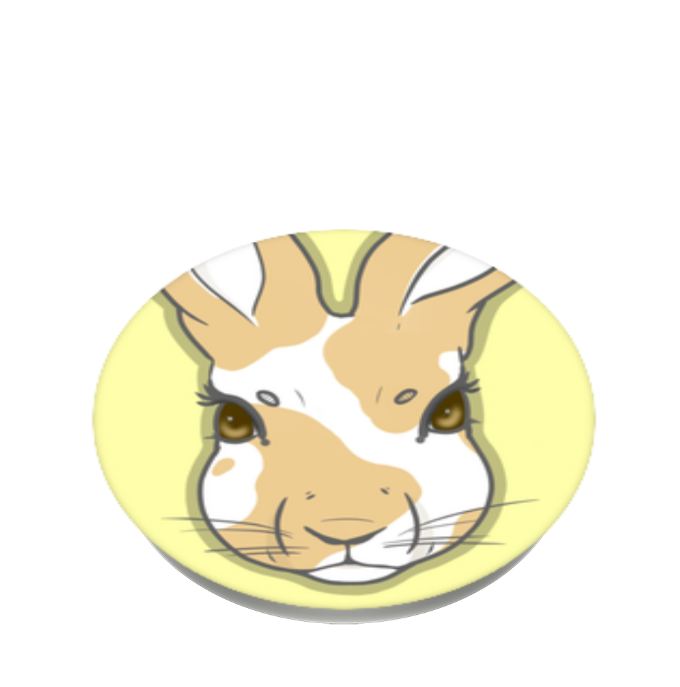 Hare for You, PopSockets