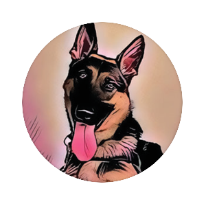 Buck the service dog, PopSockets