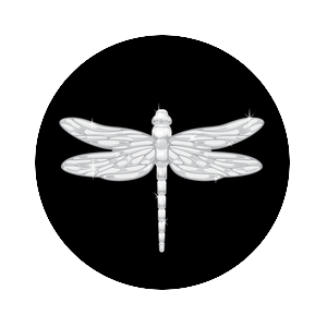 Dragonfly of Dreams, PopSockets