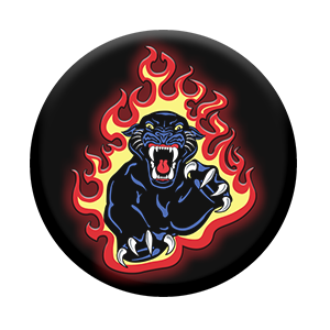 Panther Flames