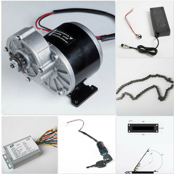 350W 24V electric motor w Gear Reduction+Reverse Controller+Charger+Pedal+MORE