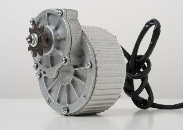 250 Watt 24 Volt electric motor conversion bicycle ebike standard chain