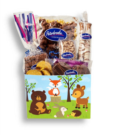 Woodland Baby Animals Gift Box