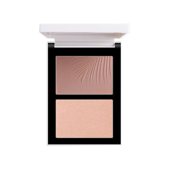 FOCALLURE Double Head 3D Bronzer Highlighter For Face