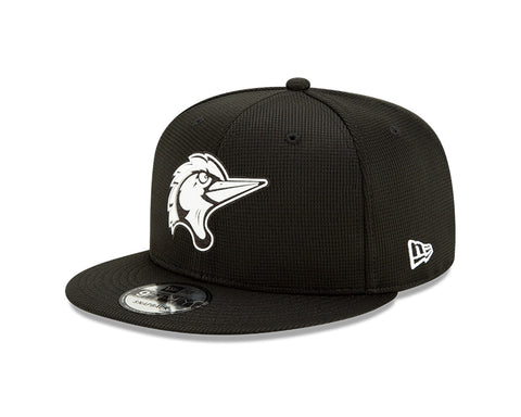 Youth New Era Home Clubhouse 9Fifty Snapback Cap