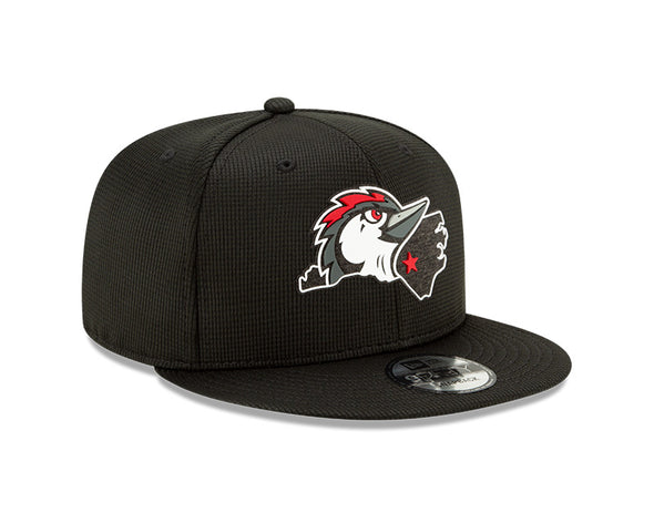 Men's New Era Home State Logo 9Fifty Snapback Clubhouse Cap