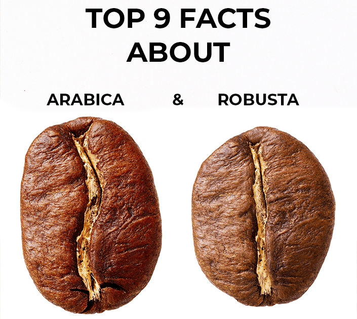 Top 9 facts about Arabica and Robusta