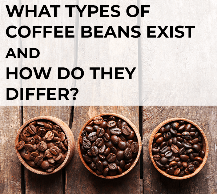 What types of coffee beans exist and how do they differ?