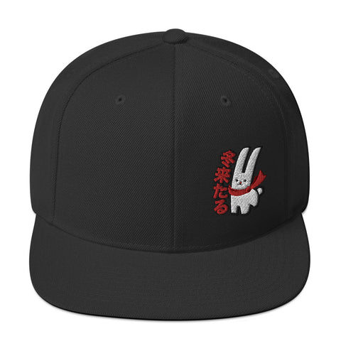 Karma Ace: Winter is Coming - Snapback Hat