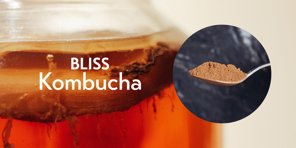 BLISS Kombucha
