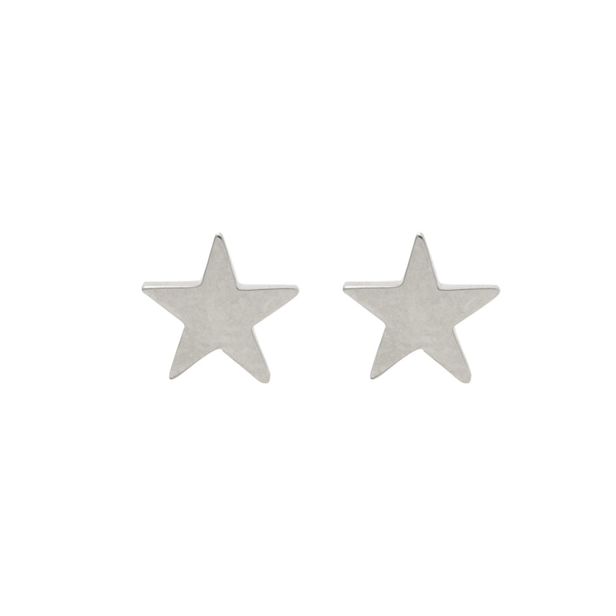 14k White Gold Shining Star Earrings.