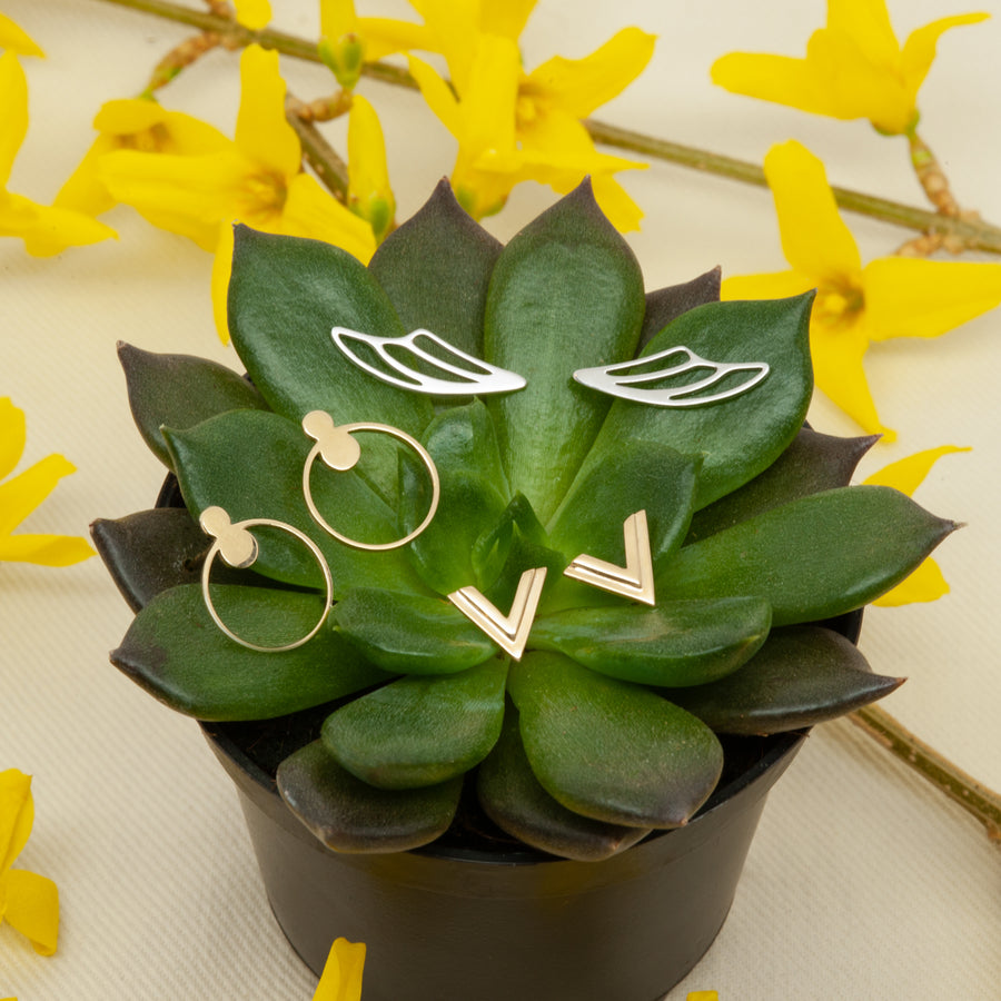 A selection of Starflower's earring offerings displayed on a succulent.