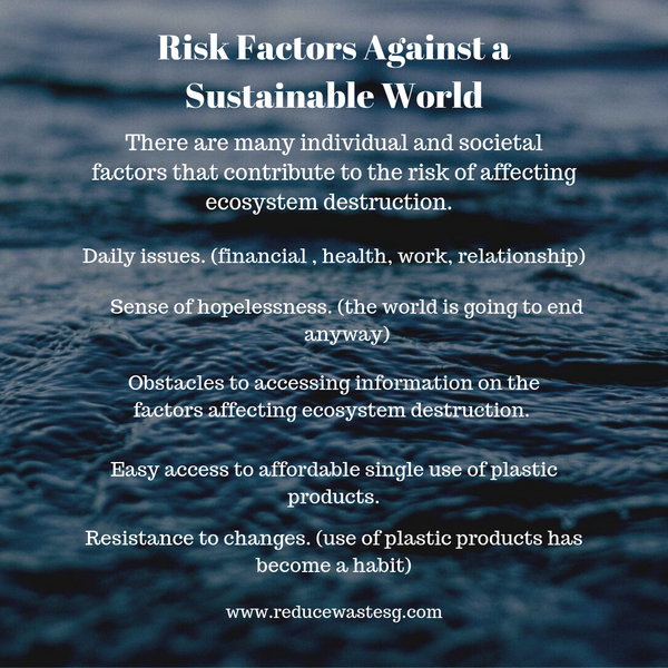 Risk Factors Against a Sustainable World