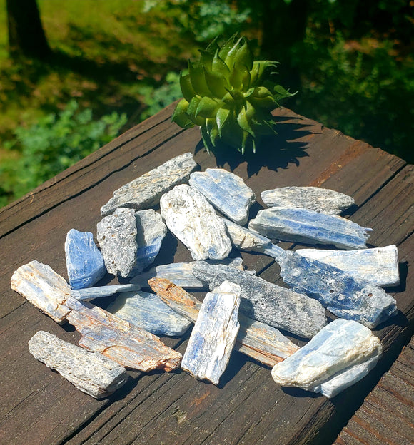 Blue Kyanite Crystals 5pc lot