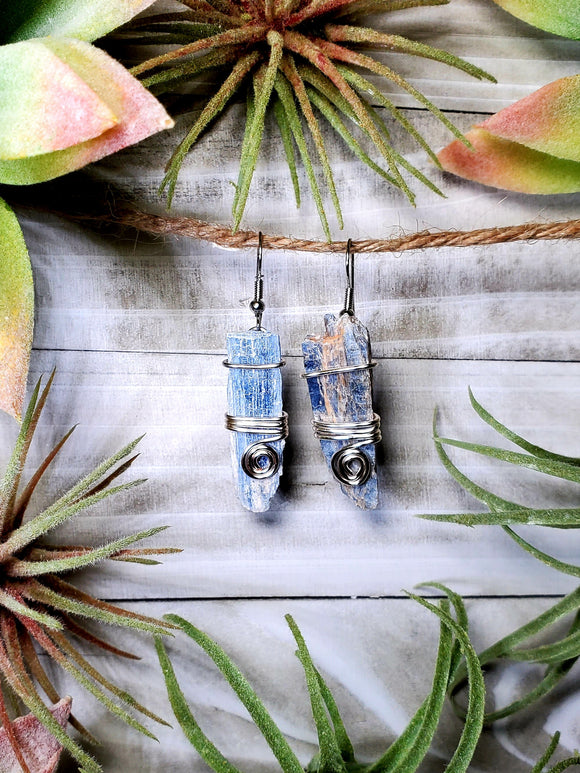 Blue Kyanite Earrings 4