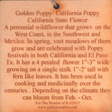 #P046 California Poppy, California State Flower