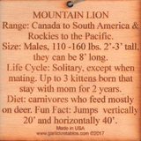 #P001 Mountain Lion