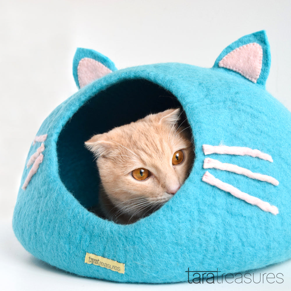 Blue head cat cave
