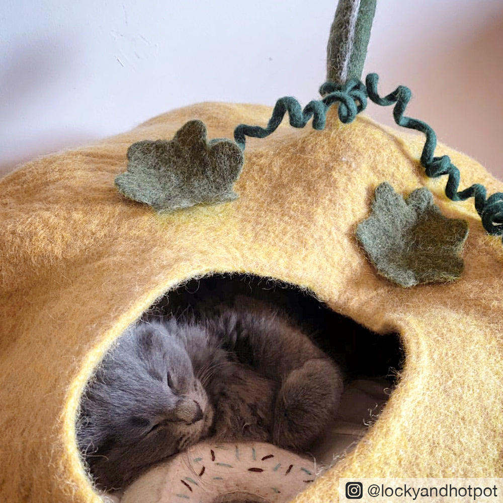Cat Cave - Pumpkin - Tara Treasures